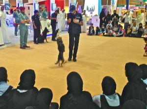 Cool demonstration by police dogs