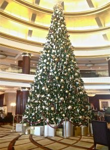 Tree at Beach Rotana